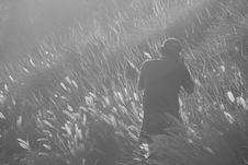 Free Man Taking Photo On Grass Field In Greyscale Photography Royalty Free Stock Photo - 109904195