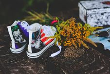 Free Unusual Sneakers Stock Photography - 109905662