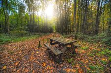 Free Brown Wooden Table With Bench Near Green Trees Stock Image - 109906971