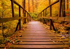 Free Brown Wooden Bridge In The Forest Royalty Free Stock Photo - 109907655