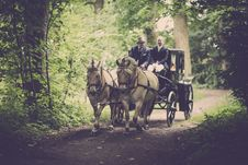 Free Two Man On A Carriage With Horse Royalty Free Stock Image - 109907766