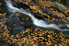 Free Falls On Black Stones Royalty Free Stock Photos - 109909238