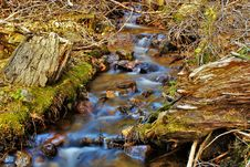 Free Water Stream On Creeks Stock Images - 109909484