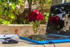 Free Hp Laptop Turned On With Corded Mouse In Front At Daytime Royalty Free Stock Photo - 109910125
