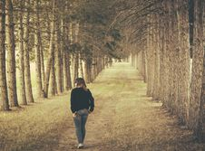 Free Woman Wearing Black Longsleeve And Gray Jeans Walking On Brown Forest Stock Photos - 109910133