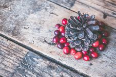 Free Brown Pine Cone Surrounded By Red Cranberry Photography Stock Photos - 109910343