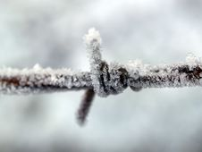 Free Closeup Photography Of Ice Covered Metal Wire Stock Images - 109910754