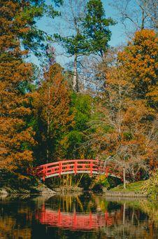 Free Bridge Surrounded By Trees Stock Photo - 109911540