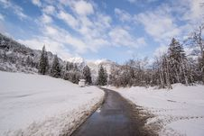 Free Pavement Road Surrounded By Snow And Pine Trees Royalty Free Stock Photography - 109911607