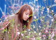 Free Woman Smelling The Pink Petaled Flowers Royalty Free Stock Images - 109911659