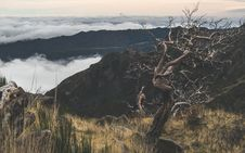 Free Mountain Scenery Royalty Free Stock Photo - 109912415