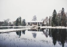 Free House Surrounding By Trees And Body Of Water Photography Royalty Free Stock Image - 109912556