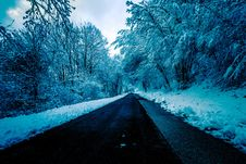 Free Black Concrete Road Surrounded By Trees With Snow Stock Images - 109912614