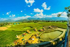 Free Green Rice Fields Royalty Free Stock Photography - 109913127