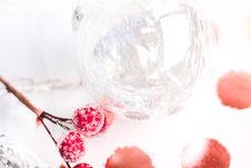 Free Selective Focus Photography Of Frost Covered Red Cherries Stock Image - 109913131