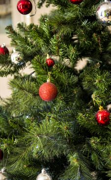Free Green And Red Christmas Tree Royalty Free Stock Photo - 109913265