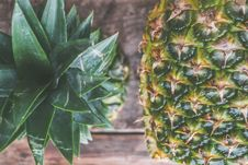 Free Closeup Photo Of Two Pineapples Stock Image - 109913461