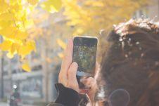 Free Man Wearing Black Jacket Using Iphone Taking Picture Of Green Leaf Tree Royalty Free Stock Photos - 109913478