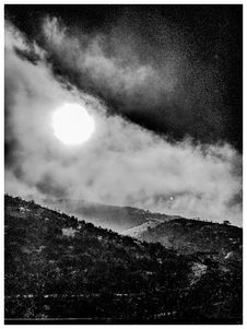 Free Grayscale Photo Of Moon And Forest Royalty Free Stock Photos - 109913498