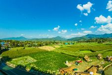 Free Houses Near The Rice Wheat Field Under The Clear Blue Skies Stock Photography - 109913682