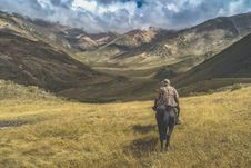 Free Man Riding Horse On Grass Near Mountains Stock Image - 109913911