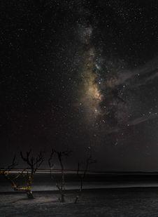 Free Bare Tree Under Starry Sky Stock Image - 109913931