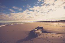 Free Brown Wood Log On Sand Near Seashore Stock Images - 109914274
