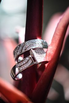 Free Macro Photography Of Two Diamond Rings Stock Photo - 109914440