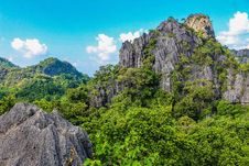Free Photography Of Mountain Covered With Trees Royalty Free Stock Photo - 109914525