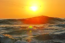 Free Photography Of Ocean Wave During Golden Hour Stock Photo - 109914610