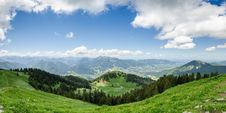 Free Grass And Pine Tree Coated Hill During Cloudy Daytime Royalty Free Stock Images - 109914759