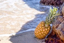 Free Pineapple In Seashore Leaning On Brown Rock Stock Photos - 109914953
