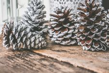 Free Four Pine Cones On Top Of Brown Wooden Surface Royalty Free Stock Photos - 109915008