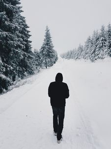 Free Person Wearing Black Hoodie While Walking On Snow Covered Road Near Pine Trees Stock Photo - 109915300