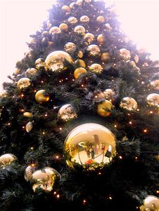 Free Low Angle Shot Of Christmas Tree With Gold-colored Bauble Royalty Free Stock Photography - 109915377