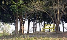 Free Photo Of Bench And Hammocks In The Park Stock Image - 109915451