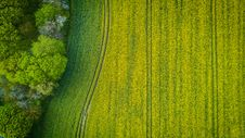 Free Aerial Photography Of Wide Green Grass Field Royalty Free Stock Image - 109915846
