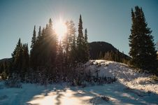 Free Hill Top With Snow And Trees Royalty Free Stock Photo - 109915865