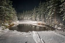 Free Roadway Filled By Snow Surrounded By Pine Trees Landscape Photography Royalty Free Stock Images - 109915929