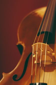 Free Focal Point Photo String Of Violin Royalty Free Stock Images - 109915939