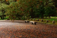 Free Wooden Benches Royalty Free Stock Image - 109916016