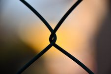 Free Shallow Focus Photography Of Silhouette Of Cyclone Wire Stock Photo - 109916150