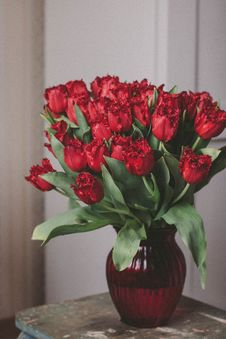 Free Bouquet Of Red Roses On Glass Vase Royalty Free Stock Photos - 109916238