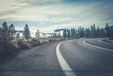 Free Gray Concrete Road Near Forest Stock Photography - 109916482