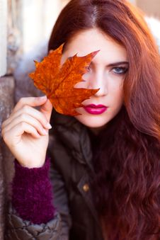 Free Woman Wearing Black Zip-up Jacket Holding Brown Maple Leaf Stock Image - 109916541