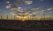 Free Scenery Fences Overseeing Orange Sunset Royalty Free Stock Photo - 109916545