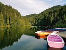 Free Boats On Calm Body Of Water Surrounded By Trees Stock Image - 109916611