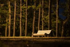 Free Brown Wooden Slatted Bench Near Brown Tree Trunk Royalty Free Stock Photography - 109917307