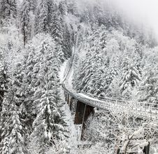 Free Aerial Photography Of Train Rail Between Winter Trees Stock Photos - 109917693