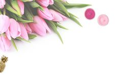 Free Pink Tulip Flowers With White Background Stock Images - 109918264